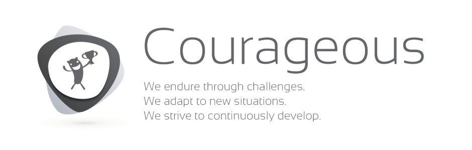 VALUES-Courages